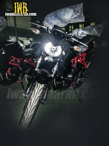 Ninja 250 RR Naked Mono